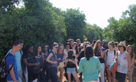 The dream made real of the French students in Gospa Citrus Farm