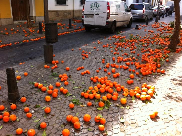 Absolutely waste street oranges.