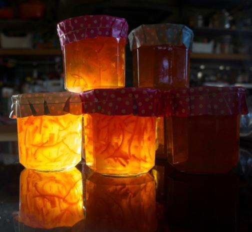 Marmalade by Lindsey Dickson
