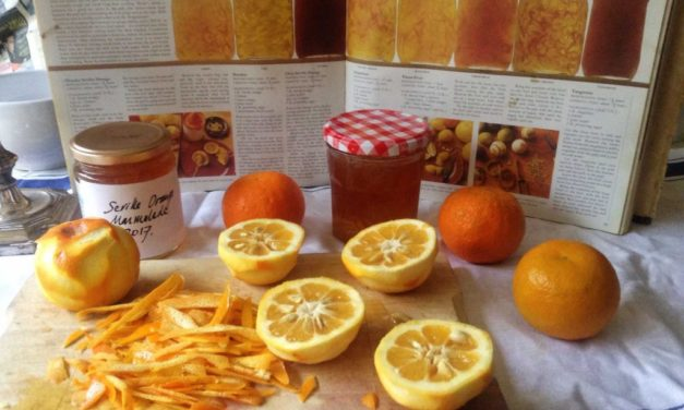 Marmalade Season by Vanessa Innes-Wagstaff