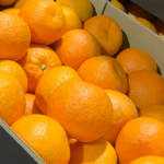 Gospa Citrus adds sweetness to the bitter Seville oranges
