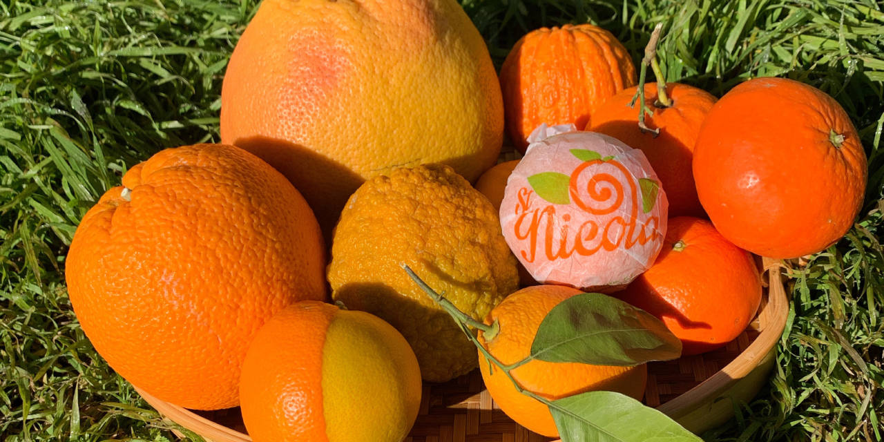 Why Gospa Citrus oranges are so famous